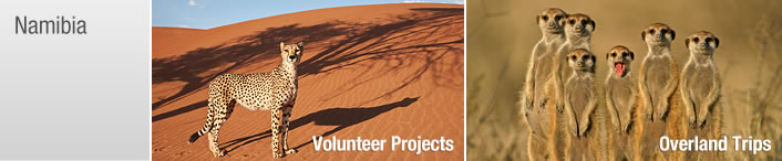 Namibia Volunteer Namibia